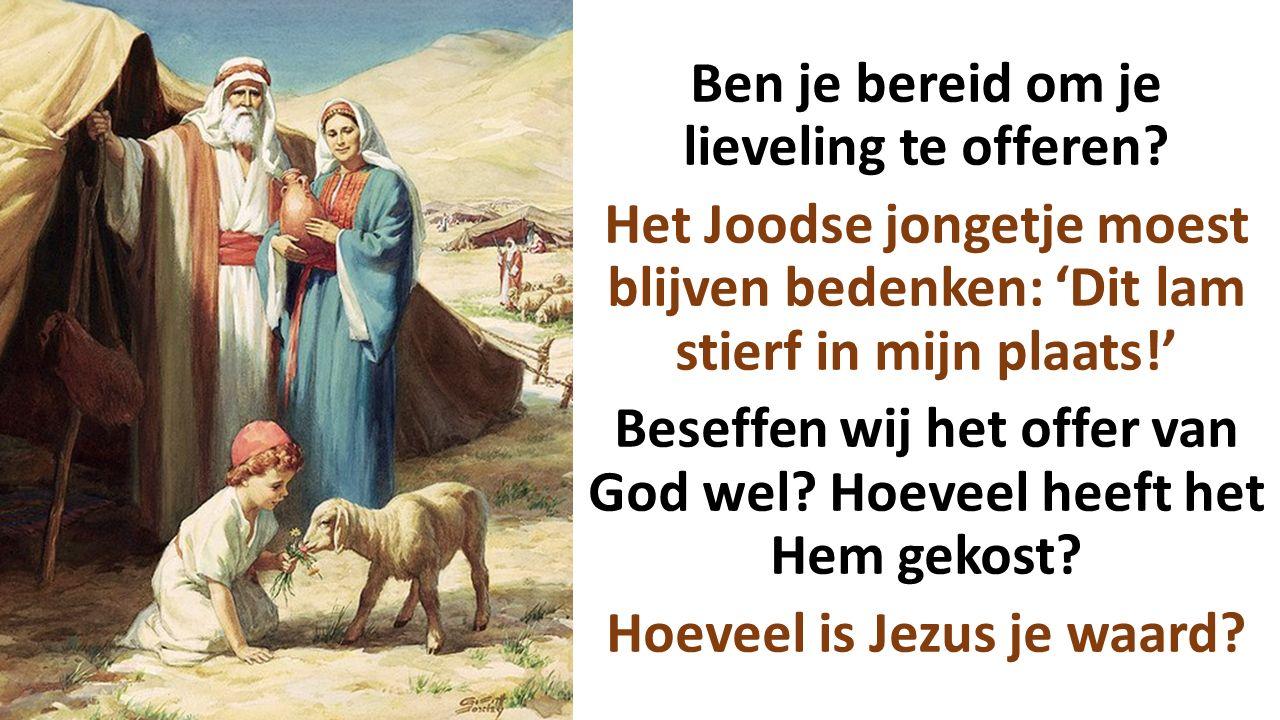 Ben je bereid om je lieveling te offeren? Het Joodse jongetje moest blijven bedenken: 'Dit lam stierf in mijn plaats!' Beseffen wij het offer van God