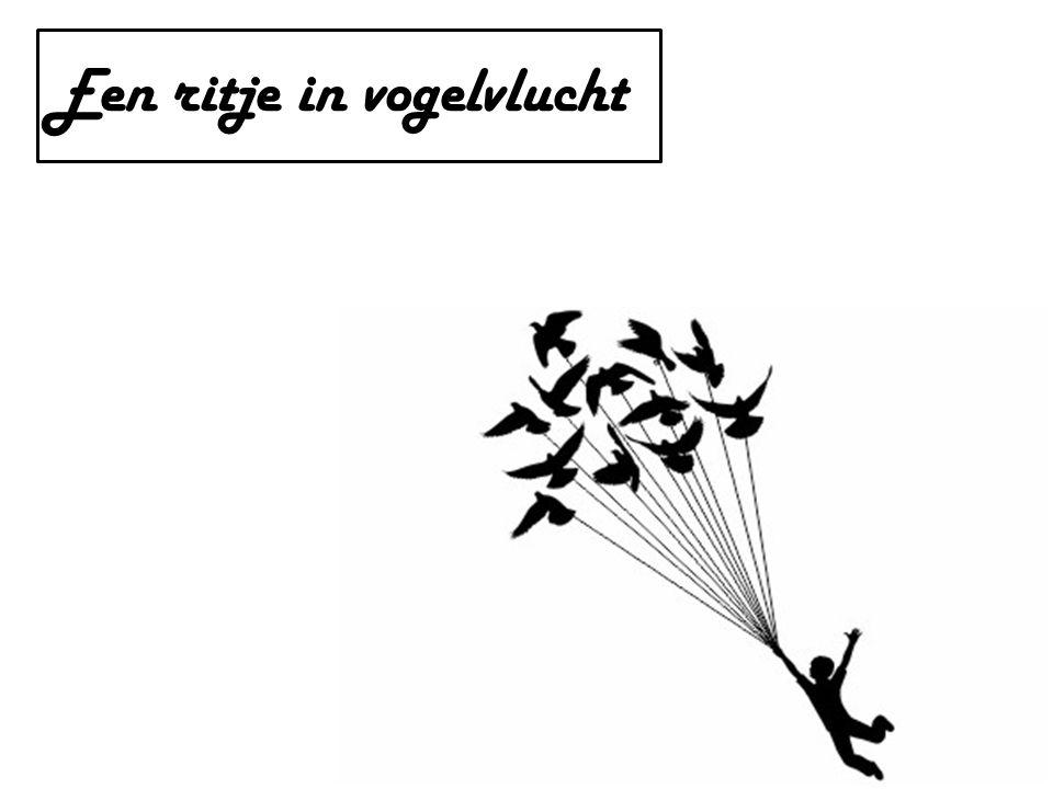 Een ritje in vogelvlucht
