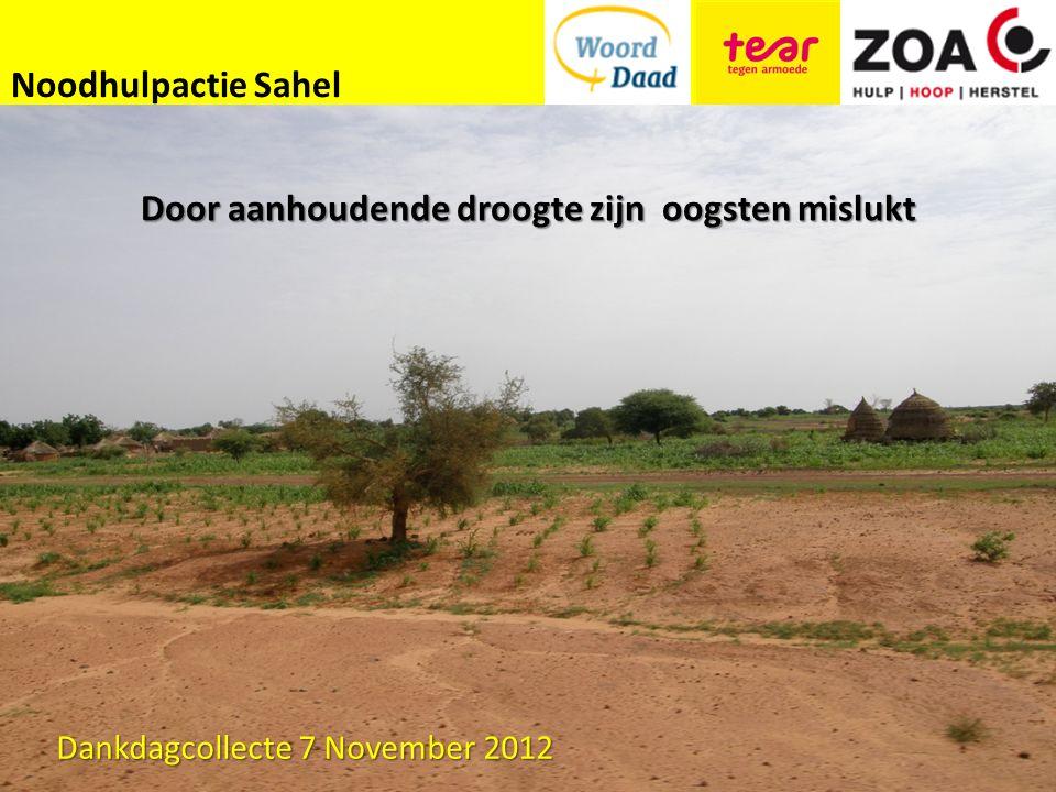 Noodhulpactie Sahel Door aanhoudende droogte zijn oogsten mislukt Dankdagcollecte 7 November 2012