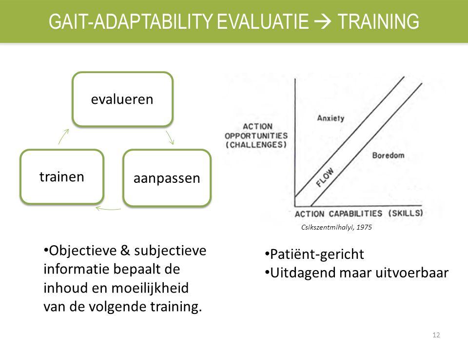 12 evalueren aanpassen trainen Patiënt-gericht Uitdagend maar uitvoerbaar Objectieve & subjectieve informatie bepaalt de inhoud en moeilijkheid van de