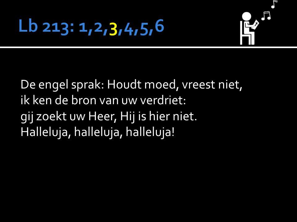 De engel sprak: Houdt moed, vreest niet, ik ken de bron van uw verdriet: gij zoekt uw Heer, Hij is hier niet.