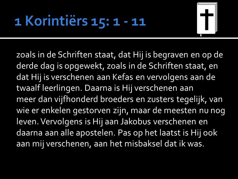 zoals in de Schriften staat, dat Hij is begraven en op de derde dag is opgewekt, zoals in de Schriften staat, en dat Hij is verschenen aan Kefas en vervolgens aan de twaalf leerlingen.