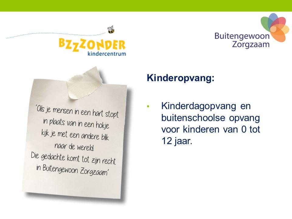 Kinderopvang: Kinderdagopvang en buitenschoolse opvang voor kinderen van 0 tot 12 jaar.