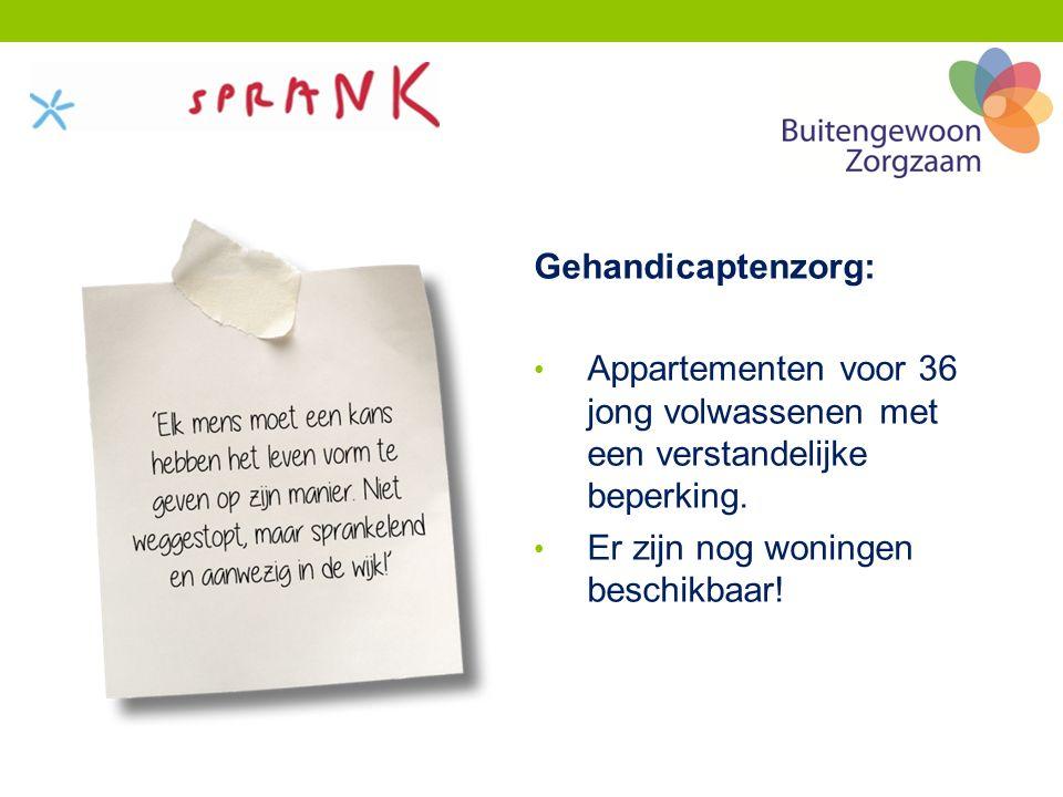 Gehandicaptenzorg: Appartementen voor 36 jong volwassenen met een verstandelijke beperking.