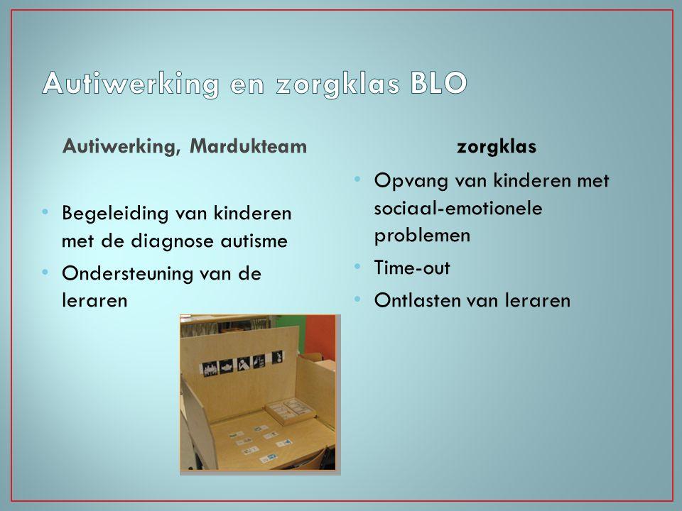 Autiwerking, Mardukteam Begeleiding van kinderen met de diagnose autisme Ondersteuning van de leraren zorgklas Opvang van kinderen met sociaal-emotion