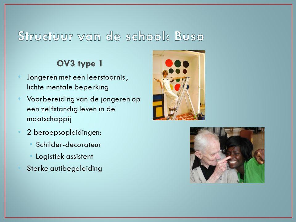 OV3 type 1 Jongeren met een leerstoornis, lichte mentale beperking Voorbereiding van de jongeren op een zelfstandig leven in de maatschappij 2 beroeps
