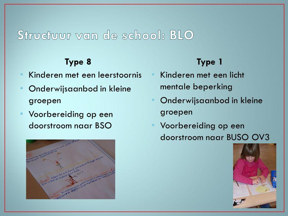 Type 8 Kinderen met een leerstoornis Onderwijsaanbod in kleine groepen Voorbereiding op een doorstroom naar BSO Type 1 Kinderen met een licht mentale
