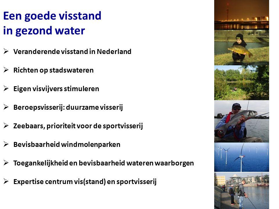 Een goede visstand in gezond water  Veranderende visstand in Nederland  Richten op stadswateren  Eigen visvijvers stimuleren  Beroepsvisserij: duurzame visserij  Zeebaars, prioriteit voor de sportvisserij  Bevisbaarheid windmolenparken  Toegankelijkheid en bevisbaarheid wateren waarborgen  Expertise centrum vis(stand) en sportvisserij