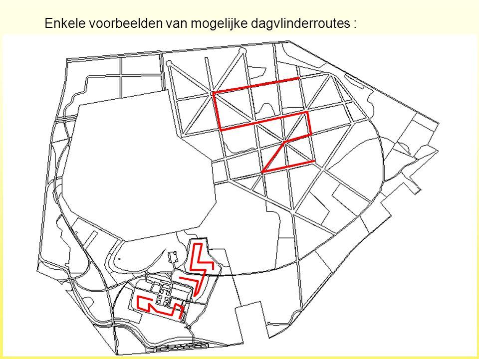 Enkele voorbeelden van mogelijke dagvlinderroutes :