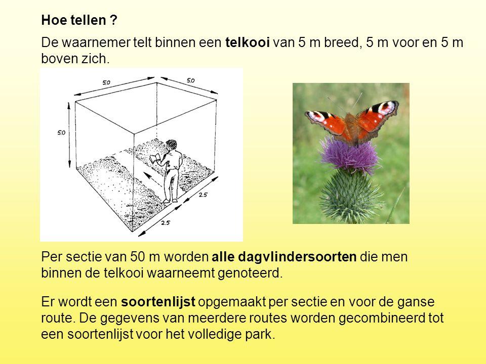 Hoe tellen ? Per sectie van 50 m worden alle dagvlindersoorten die men binnen de telkooi waarneemt genoteerd. De waarnemer telt binnen een telkooi van