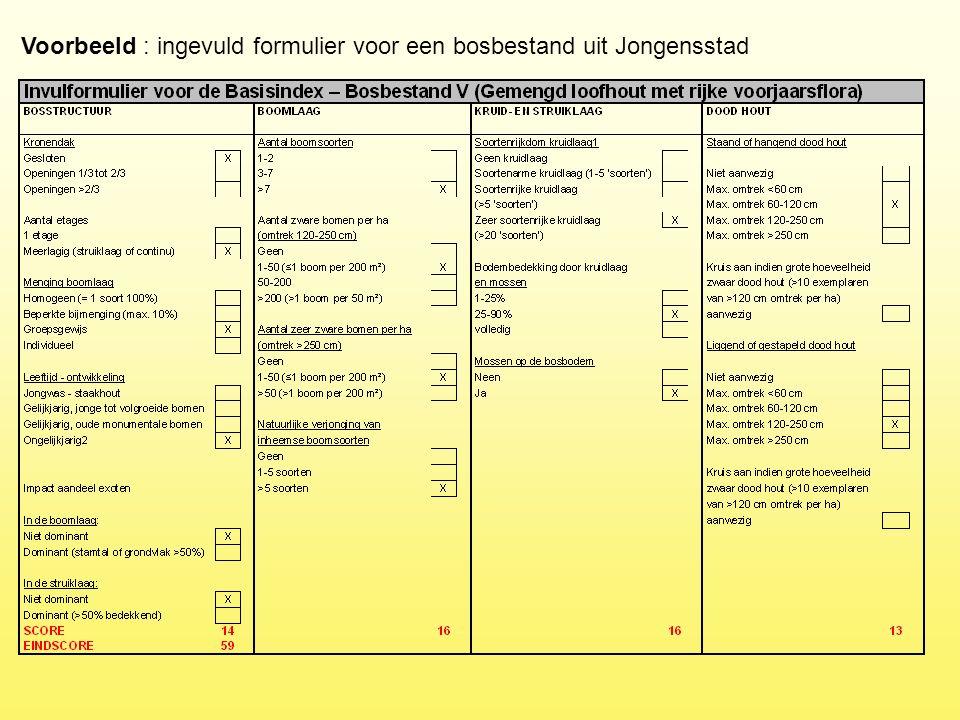 Voorbeeld : ingevuld formulier voor een bosbestand uit Jongensstad