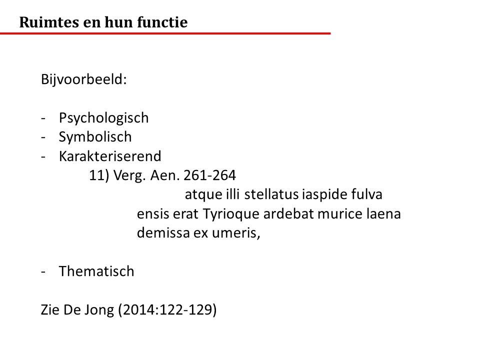 Ruimtes en hun functie Bijvoorbeeld: -Psychologisch -Symbolisch -Karakteriserend 11) Verg.