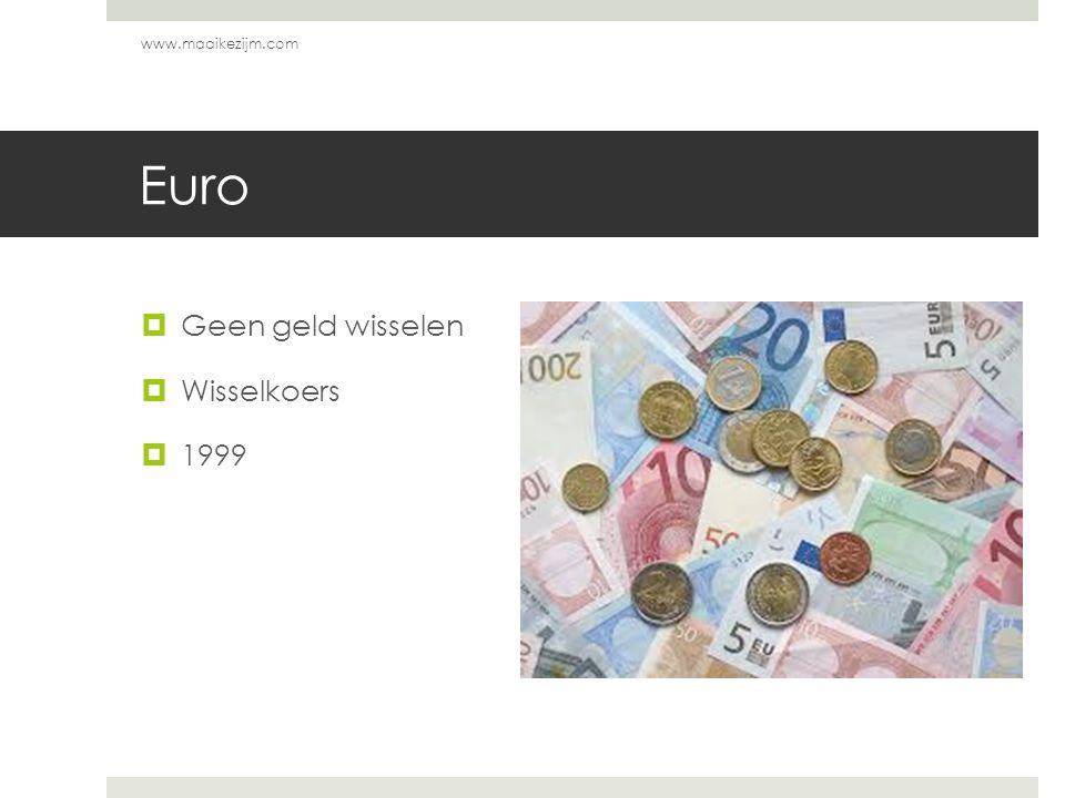 Euro  Geen geld wisselen  Wisselkoers  1999 www.maaikezijm.com