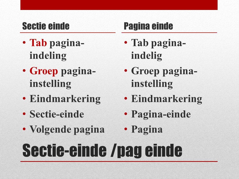 Sectie-einde /pag einde Sectie einde Tab pagina- indeling Groep pagina- instelling Eindmarkering Sectie-einde Volgende pagina Pagina einde Tab pagina-