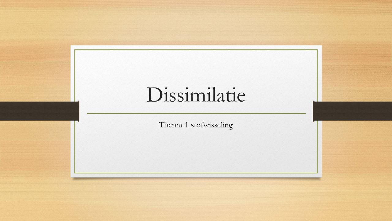 Dissimilatie Thema 1 stofwisseling