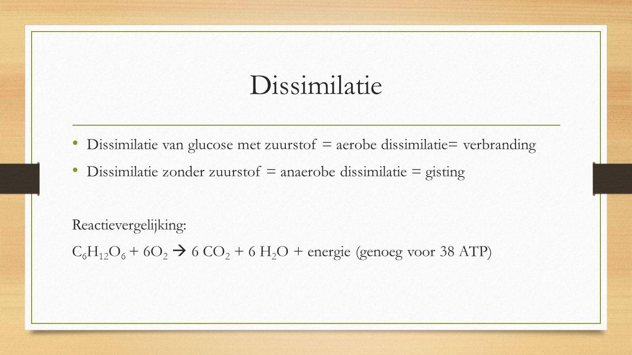 Dissimilatie Dissimilatie van glucose met zuurstof = aerobe dissimilatie= verbranding Dissimilatie zonder zuurstof = anaerobe dissimilatie = gisting R