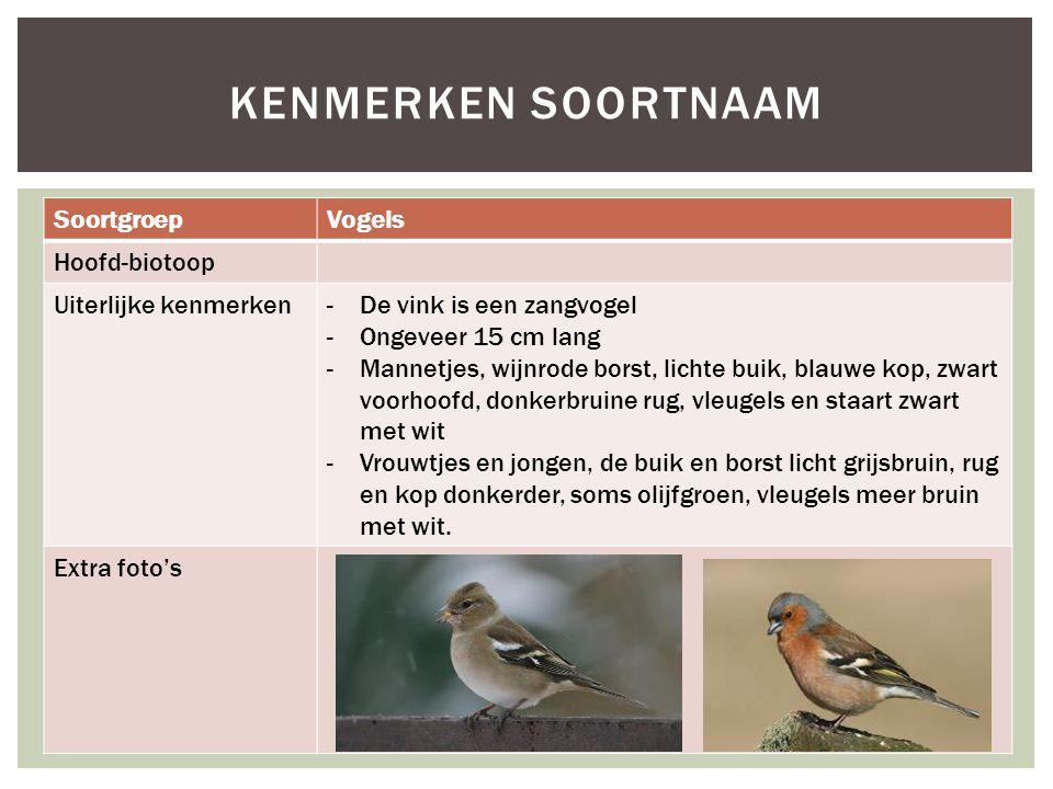 SoortgroepVogels Hoofd-biotoop Uiterlijke kenmerken-De vink is een zangvogel -Ongeveer 15 cm lang -Mannetjes, wijnrode borst, lichte buik, blauwe kop,