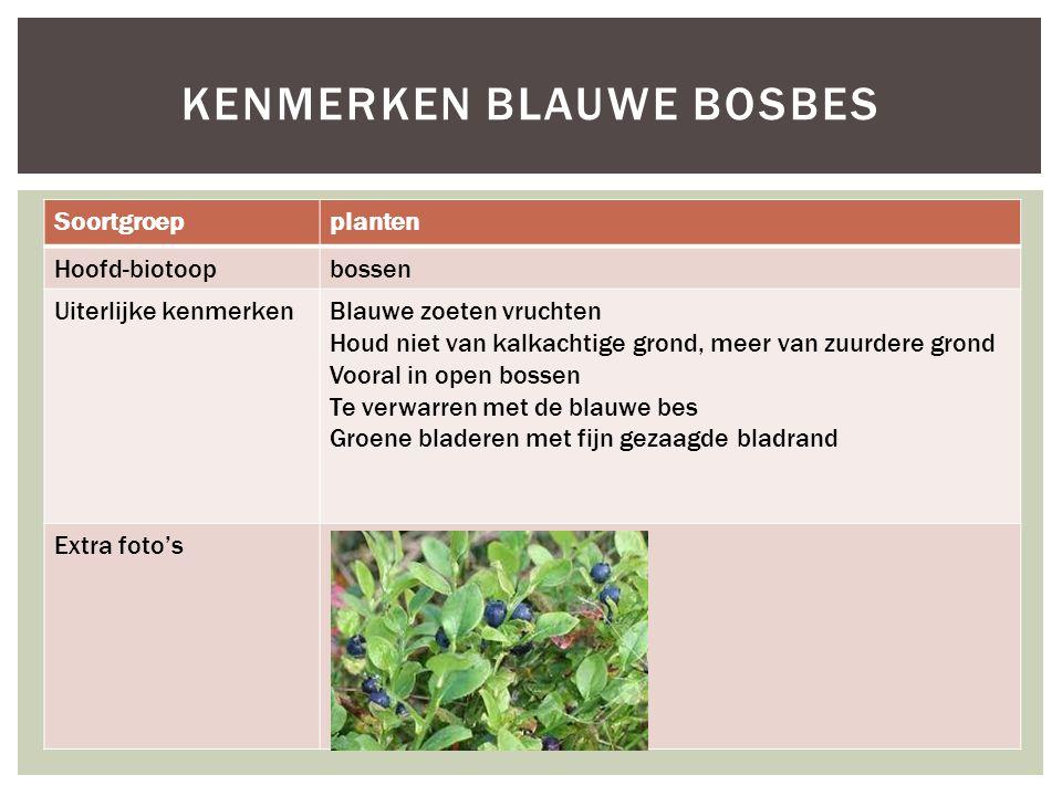 Soortgroepplanten Hoofd-biotoopbossen Uiterlijke kenmerkenBlauwe zoeten vruchten Houd niet van kalkachtige grond, meer van zuurdere grond Vooral in op