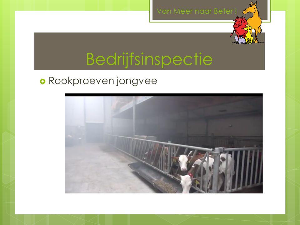 Bedrijfsinspectie  Rookproeven jongvee Van Meer naar Beter !