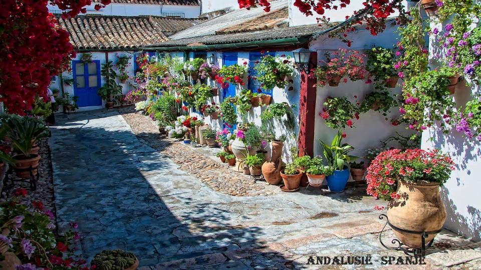 Andalusië - Spanje