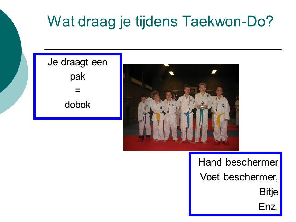 Wat draag je tijdens Taekwon-Do? Je draagt een pak = dobok Hand beschermer Voet beschermer, Bitje Enz.