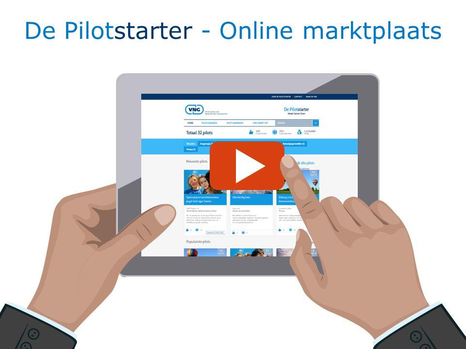 13 De Pilotstarter - Online marktplaats
