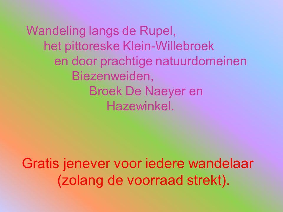 Wandeling langs de Rupel, het pittoreske Klein-Willebroek en door prachtige natuurdomeinen Biezenweiden, Broek De Naeyer en Hazewinkel.