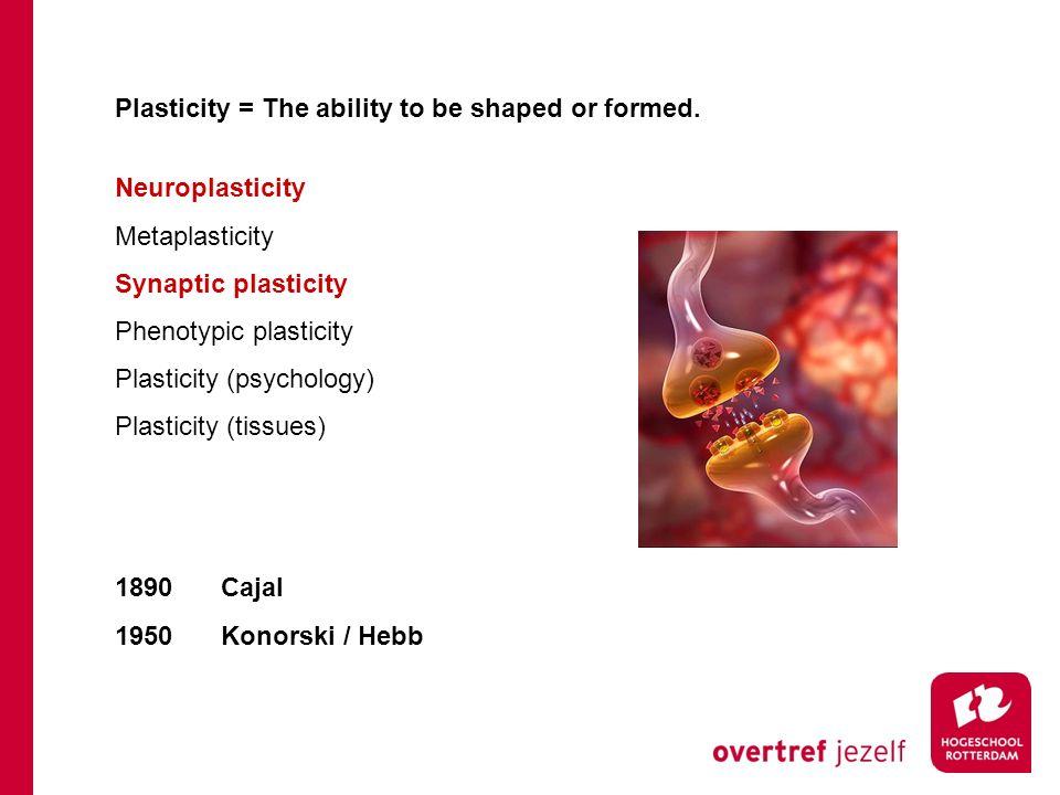 Neuroplasticiteit http://youtu.be/VaDlLD97CLM/watch?v=TSu9HGnlMV0 Hersengebieden kunnen elkaars taak overnemen.