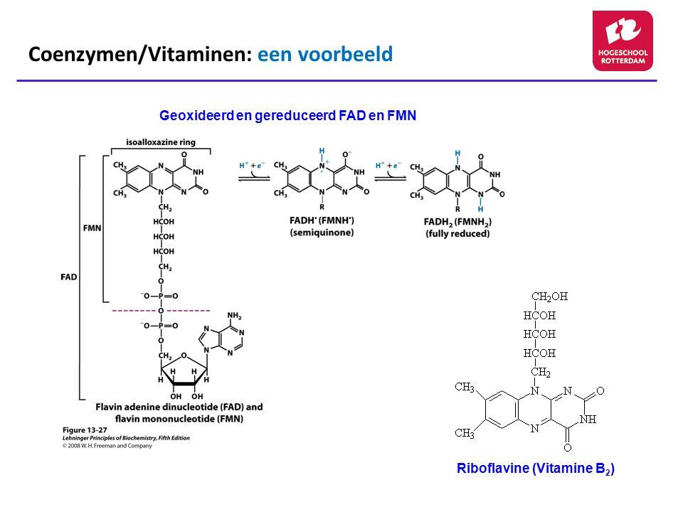 Geoxideerd en gereduceerd FAD en FMN Riboflavine (Vitamine B 2 ) Coenzymen/Vitaminen: een voorbeeld