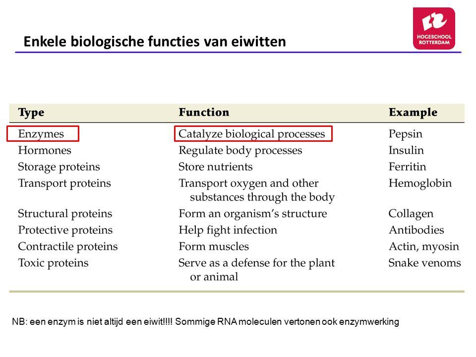 Enkele biologische functies van eiwitten NB: een enzym is niet altijd een eiwit!!!! Sommige RNA moleculen vertonen ook enzymwerking