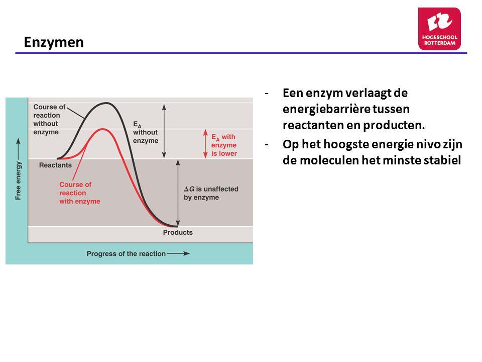 -Een enzym verlaagt de energiebarrière tussen reactanten en producten. -Op het hoogste energie nivo zijn de moleculen het minste stabiel Enzymen
