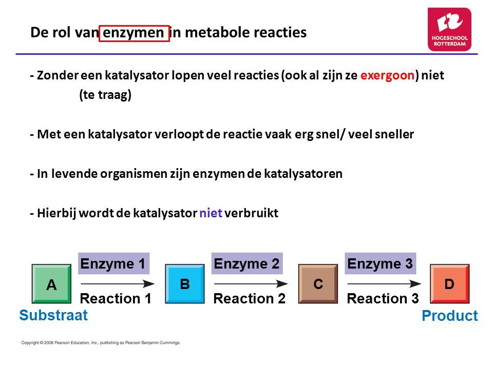 De rol van enzymen in metabole reacties - Zonder een katalysator lopen veel reacties (ook al zijn ze exergoon) niet (te traag) - Met een katalysator v