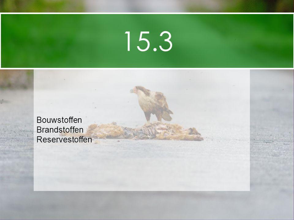 15.3 Bouwstoffen Brandstoffen Reservestoffen