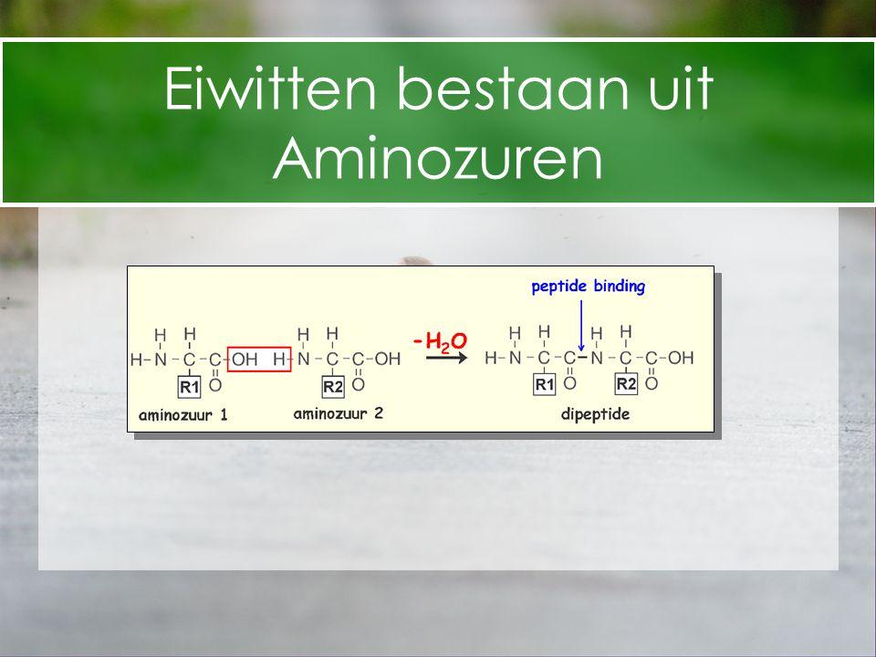Eiwitten bestaan uit Aminozuren