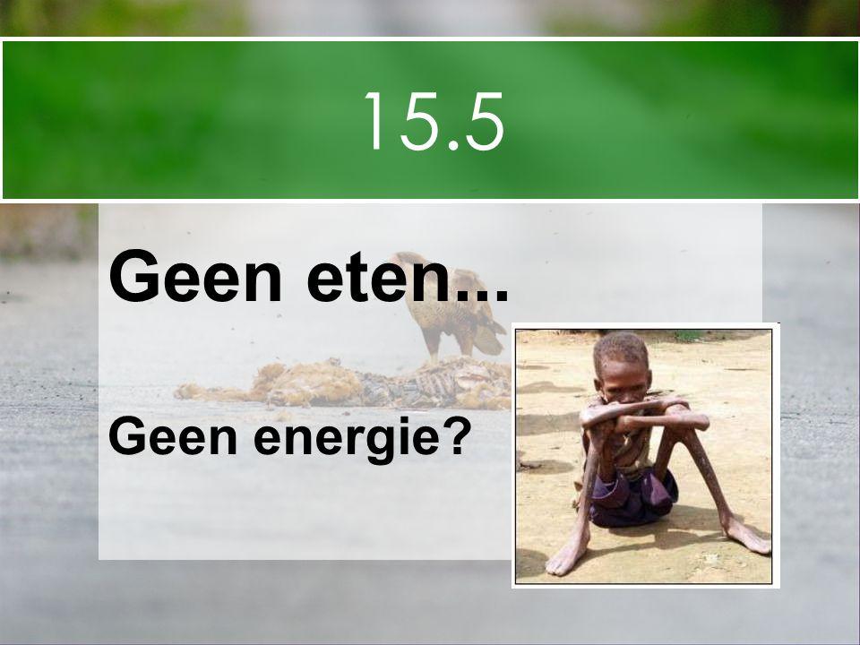 15.5 Geen eten... Geen energie?