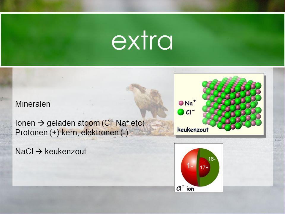 Mineralen Ionen  geladen atoom (Cl - Na + etc) Protonen (+) kern, elektronen (-) NaCl  keukenzout extra