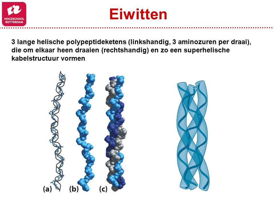 3 lange helische polypeptideketens (linkshandig, 3 aminozuren per draai), die om elkaar heen draaien (rechtshandig) en zo een superhelische kabelstructuur vormen Eiwitten