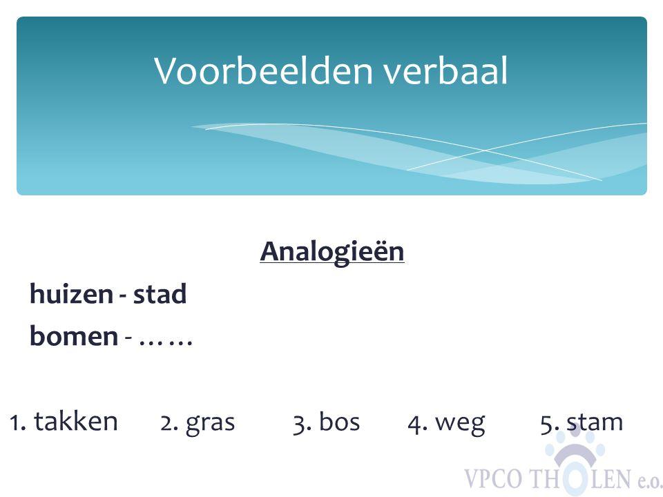 Analogieën huizen - stad bomen - …… 1. takken 2. gras 3. bos4. weg5. stam Voorbeelden verbaal