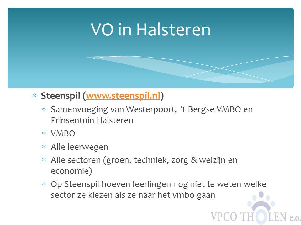  Steenspil (www.steenspil.nl)www.steenspil.nl  Samenvoeging van Westerpoort, 't Bergse VMBO en Prinsentuin Halsteren  VMBO  Alle leerwegen  Alle