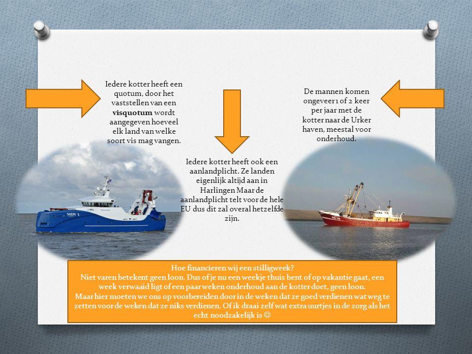 Iedere kotter heeft een quotum, door het vaststellen van een visquotum wordt aangegeven hoeveel elk land van welke soort vis mag vangen. Iedere kotter