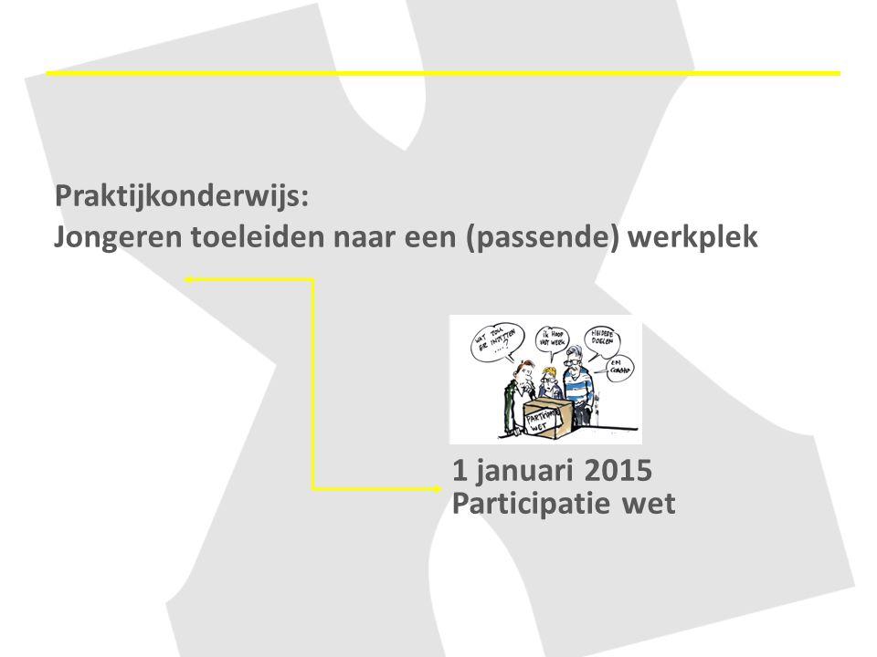 Praktijkonderwijs: Jongeren toeleiden naar een (passende) werkplek 1 januari 2015 Participatie wet