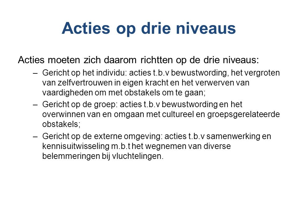 Actielijnen 1.Activering changemakers 2.Vorming lokale allianties 3.Uitvoering focusgroepen