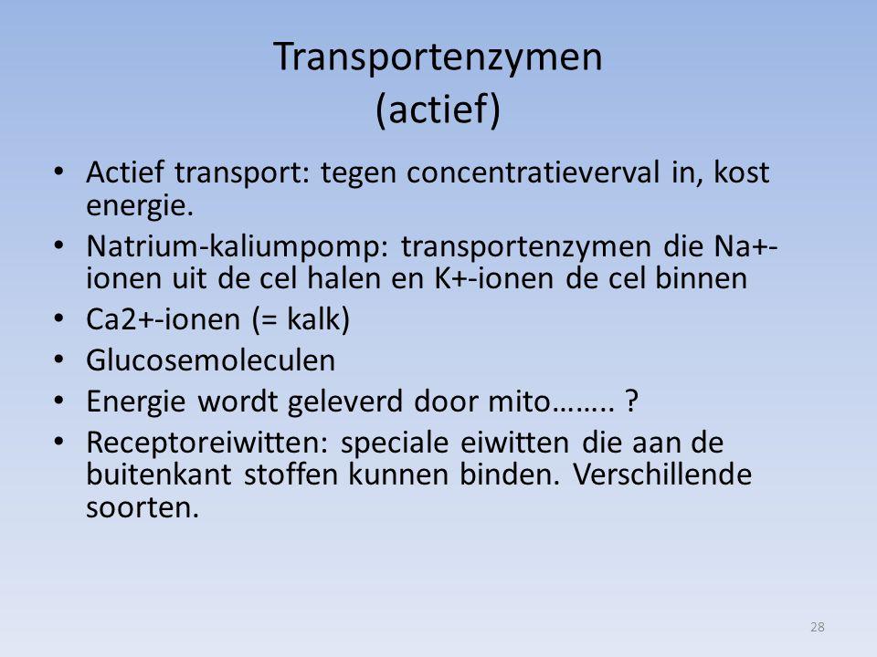 Transportenzymen (actief) Actief transport: tegen concentratieverval in, kost energie. Natrium-kaliumpomp: transportenzymen die Na+- ionen uit de cel