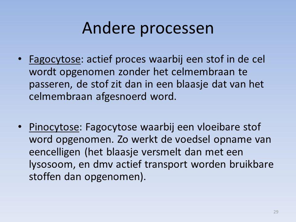 Andere processen Fagocytose: actief proces waarbij een stof in de cel wordt opgenomen zonder het celmembraan te passeren, de stof zit dan in een blaas