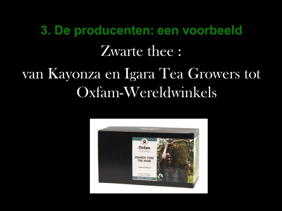 3. De producenten: een voorbeeld Zwarte thee : van Kayonza en Igara Tea Growers tot Oxfam-Wereldwinkels