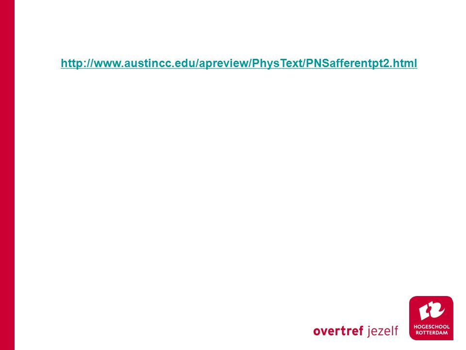http://www.austincc.edu/apreview/PhysText/PNSafferentpt2.html