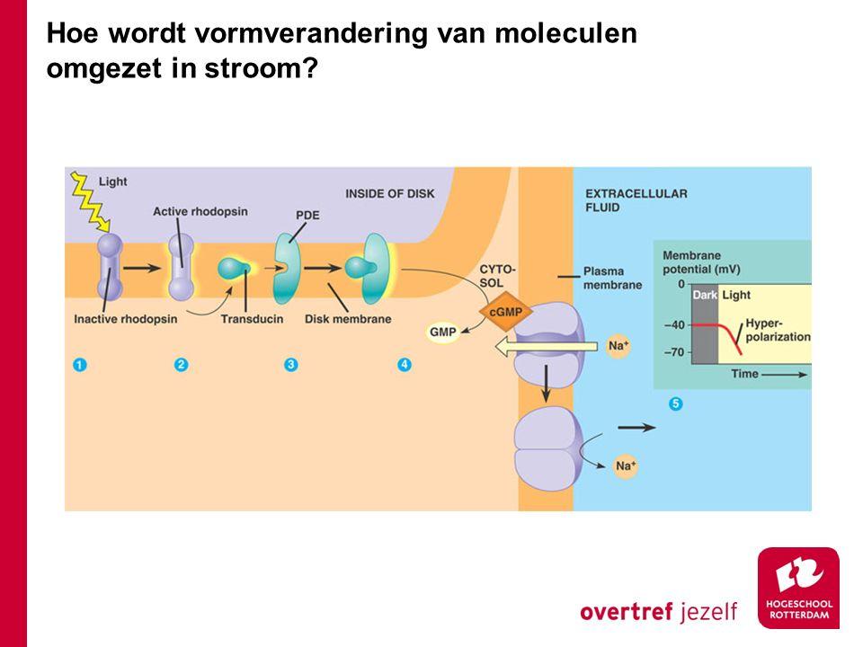 Hoe wordt vormverandering van moleculen omgezet in stroom