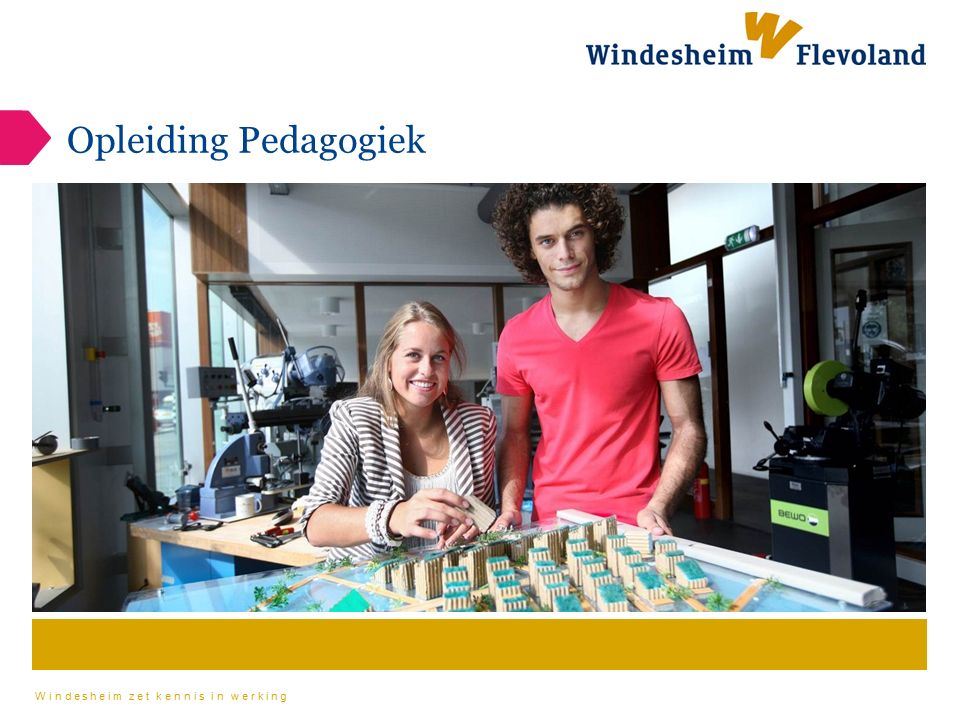 Windesheim zet kennis in werking Mogelijke werkvelden -Gezinscoach -SAVE team (voormalig bureau jeugdzorg) -Onderwijs -Werken in een wijkteam als pedagoog -Kinderopvang -Veilig Thuis (voormalig AMK en Huiselijk Geweld) -Gehandicaptenzorg -Kindertelefoon -Beleidsadvisering