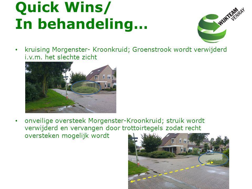 Quick Wins/ In behandeling… kruising Morgenster- Kroonkruid; Groenstrook wordt verwijderd i.v.m. het slechte zicht onveilige oversteek Morgenster-Kroo