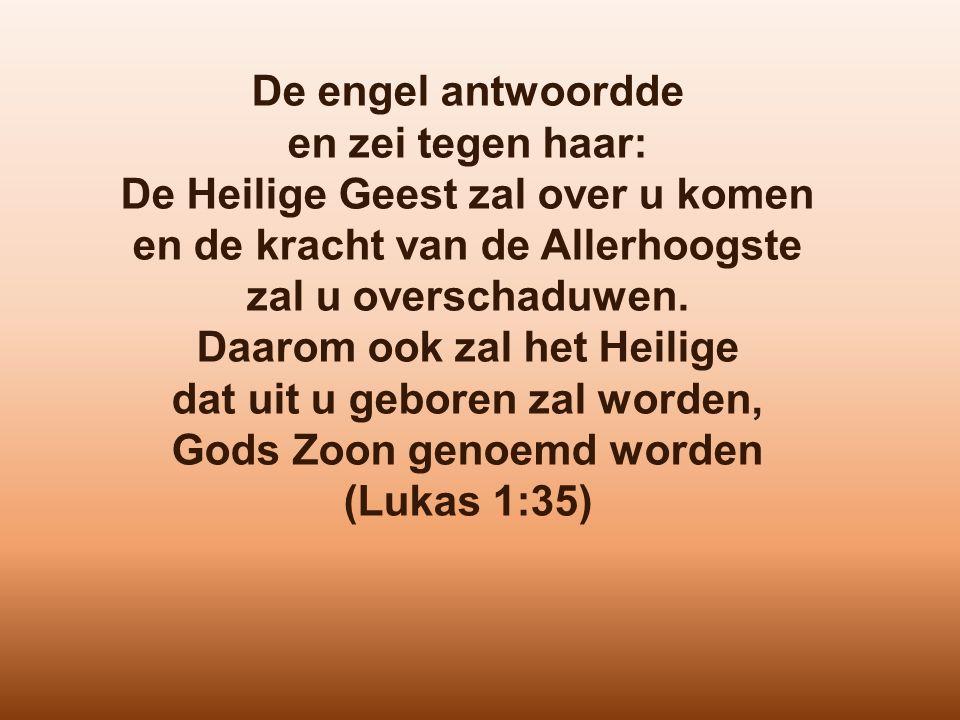 De engel antwoordde en zei tegen haar: De Heilige Geest zal over u komen en de kracht van de Allerhoogste zal u overschaduwen. Daarom ook zal het Heil